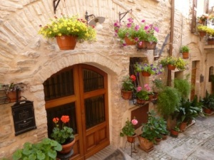 Spello in May