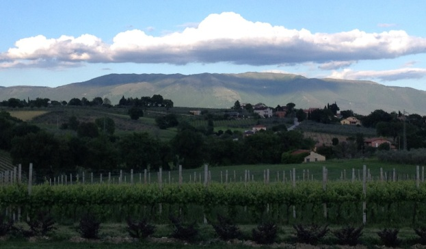 Umbria in May