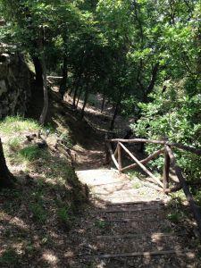 Walking Trail at Le Balze