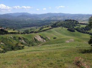 Countryside near Volterra