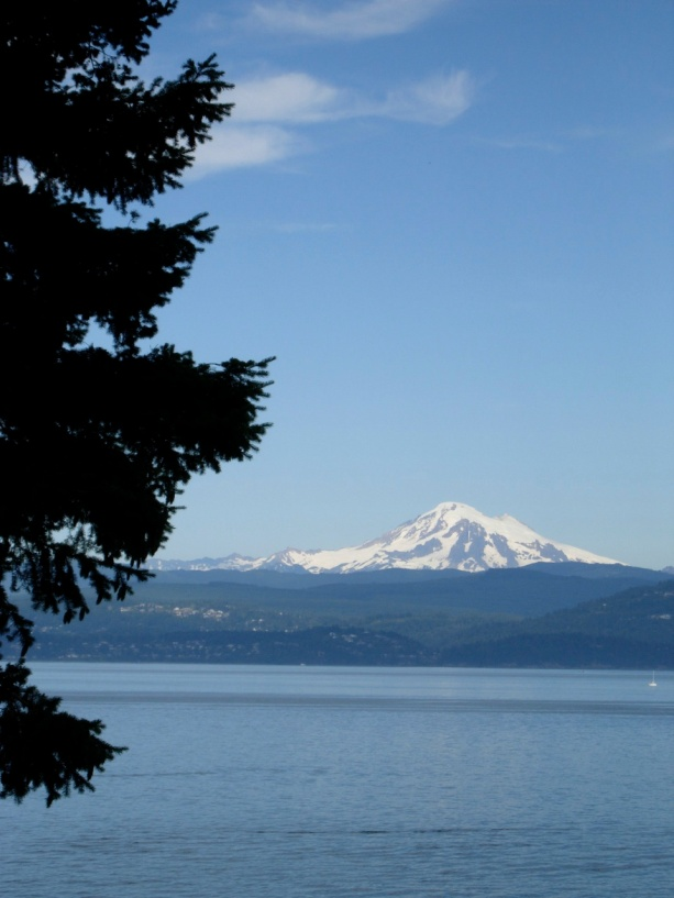 Mt. Baker & Bellingham Bay