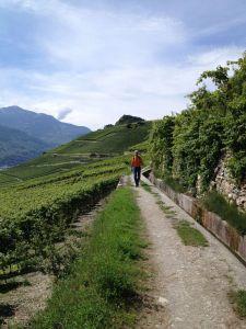 Bisse Trail
