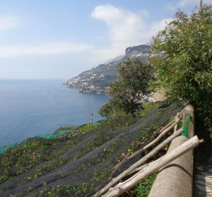 Amalfi Trails & Views
