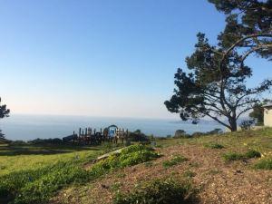 Trail near Baker Beach