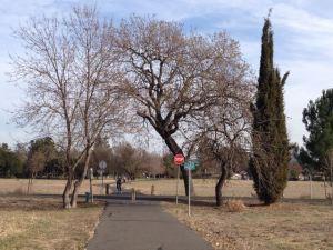 Walking & Bike Trail