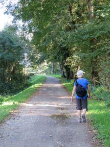 Francigena Trail to Lucca